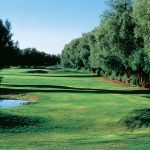 The lush greens of the Furnace Creek Golf Course.