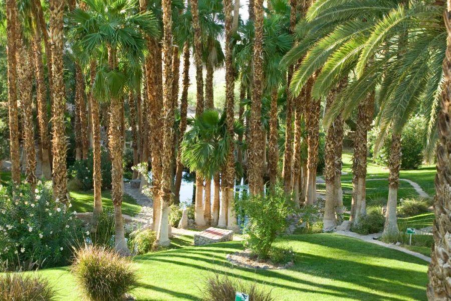 Inn gardens