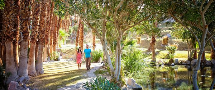 Couple walking through palm gardens